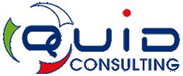 Quid Consulting srl